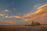 Lenticular Clouds Glow in a Sunset over Pastures in Montana's Gallatin Valley, Near Bozeman Lámina fotográfica por Gordon Wiltsie