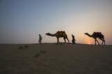 Men Lead Camels over Sand Dunes at the Edge of the Thar Desert, Famous for Camel Rides Lámina fotográfica por Macduff Everton