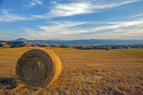 A Hay Bales in a Harvested Field Photographic Print by Gordon Wiltsie