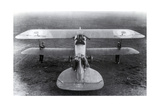 WWI, Albatros D.III Fighter Plane Photographic Print by  Science Source