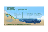 Causes of Changes in Sea Level Prints by Gwen Shockey
