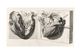 Heart Anatomy, Illustration, 1739 Giclee Print by  Science Source