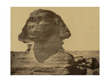 The Sphinx, 19th Century Photographic Print by  Science Source