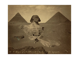 Sphinx and Giza Pyramids, 19th Century Photographic Print by  Science Source