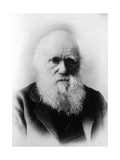 Charles Robert Darwin, English Naturalist Photographic Print by  Science Source