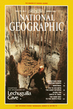 Cover of the March, 1991 National Geographic Magazine Fotografisk tryk af Michael Nichols