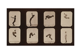 Muybridge Locomotion, Back Somersault, 1881 Giclee Print by  Science Source