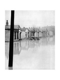 Ohio River Flood, 1937 Photographic Print by  Science Source