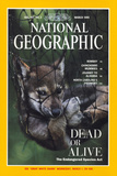 Cover of the March, 1995 Issue of National Geographic Magazine Photographic Print by Joel Sartore