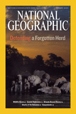 Cover of the March, 2007 Issue of National Geographic Magazine Photographic Print by Michael Nichols