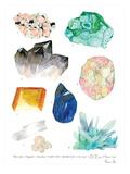 Crystal Specimen Chart 2 Art by Adrienne Vita