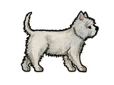 Westie Prints by Sally Pattrick