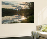 Sunset at Loughrigg Tarn Near Ambleside in the Lake District Vægplakat af Alex Treadway
