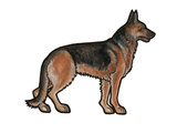 German Shepherd Prints by Sally Pattrick