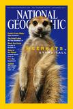 Cover of the September, 2002 National Geographic Magazine Reprodukcja zdjęcia autor Mattias Klum