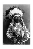 Red Cloud, Oglala Lakota Indian Chief Photographic Print by  Science Source
