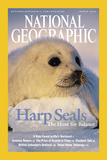 Cover of the March, 2004 Issue of National Geographic Magazine Photographic Print by Brian J. Skerry