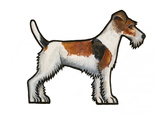 Fox Terrier Art by Sally Pattrick