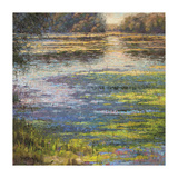 Pond at Dawn Giclee Print by  Sarback