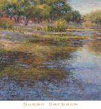 Sunlit Pond 1 Prints by Susan Sarback