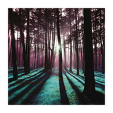 Technicolor Trees 3 Giclee Print by  Soderberg