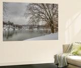 Winter Along the Potomac River Vægplakat af Irene Owsley