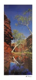 Outback Reflection Poster by Ken Duncan