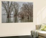 The Potomac River Inside the Beltway on a Winter Day Vægplakat af Irene Owsley
