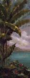 Palm Cove I Posters af J. Martin