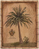 Caribbean Palm III With Bamboo Border Art by Betty Whiteaker
