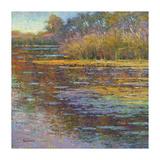 Sunlit Pond 2 Giclee Print by  Sarback