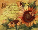 Sunflowers On Gold Prints by Susan Winget