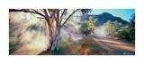 Parachilna Gorge S.A. Prints by Ken Duncan