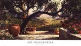 Art Fronckowiak - Napa Patio Reprodukce