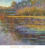 Sunlit Pond 2 Poster by Susan Sarback