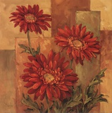 Daisies Terra Cotta Prints by Barbara Mock