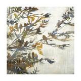 Flock Together Poster by Liz Jardine
