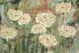 White Roses Prints by Carol Black