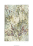 Flower Dream I Limited Edition by Jennifer Goldberger