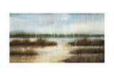 Early Morning Mist Prints by Liz Jardine
