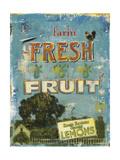 Fresh Fruit Art by Liz Jardine