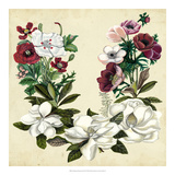 Magnolia & Poppy Wreath II Impressão giclée por Naomi McCavitt