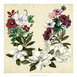 Magnolia & Poppy Wreath II Giclee Print by Naomi McCavitt