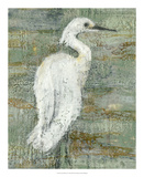 Textured Heron II Giclee Print by Jennifer Goldberger