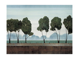 Six Trees Prints by Robert Charon