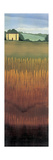 Tuscan Fields I Prints by Robert Charon