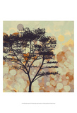 Sunshine Garden VI Prints by Irena Orlov