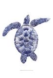 Marine Turtle II Kunst van Grace Popp