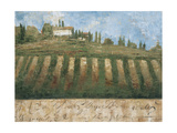Rustic Tuscany Posters by Liz Jardine