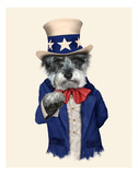 Uncle Sam (Pets Rock) Print by  Takkoda